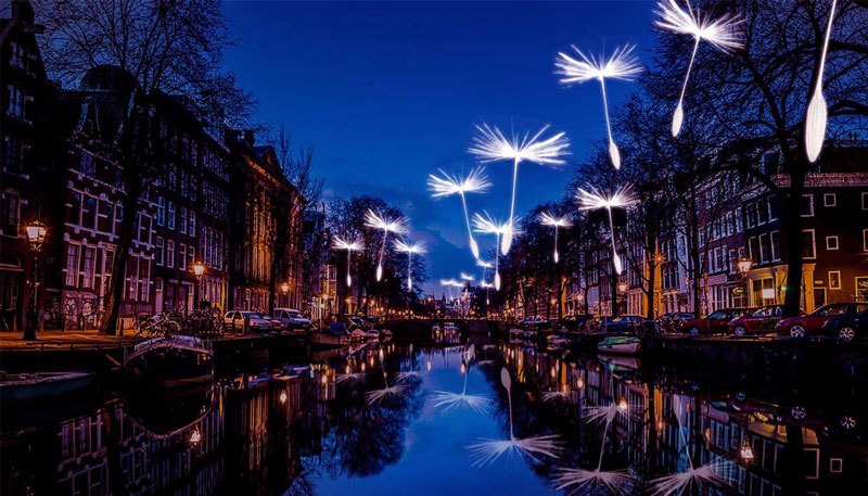 Light installation in the park and Amsterdam at night